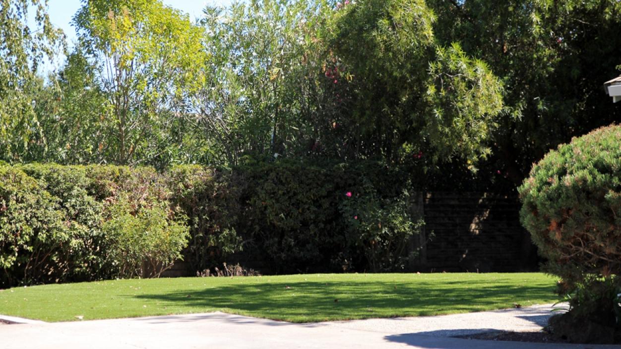 Artificial Grass Installation In Lakeland, Florida