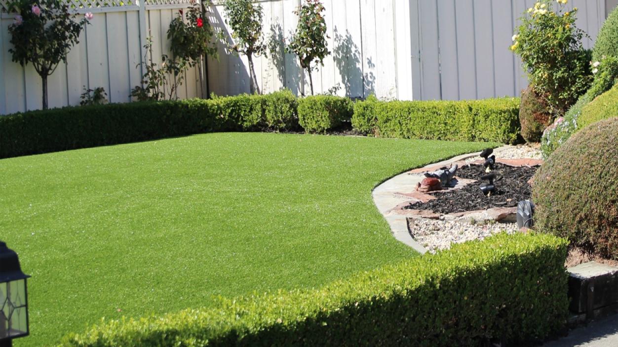 Artificial Grass Installation In Davie, Florida