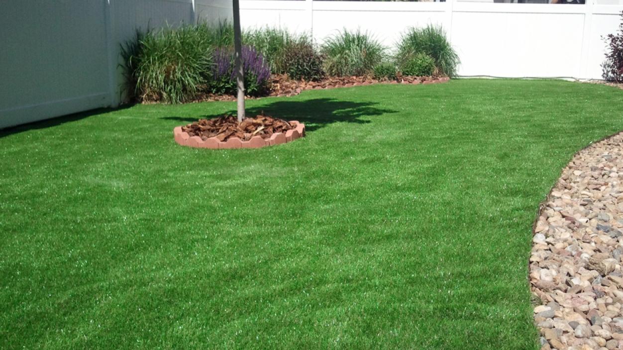 Artificial Grass, Fake Grass in Berkeley, California