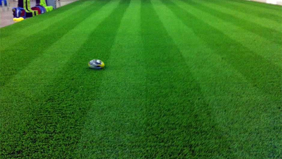 Artificial Grass Installation in Alpine, California