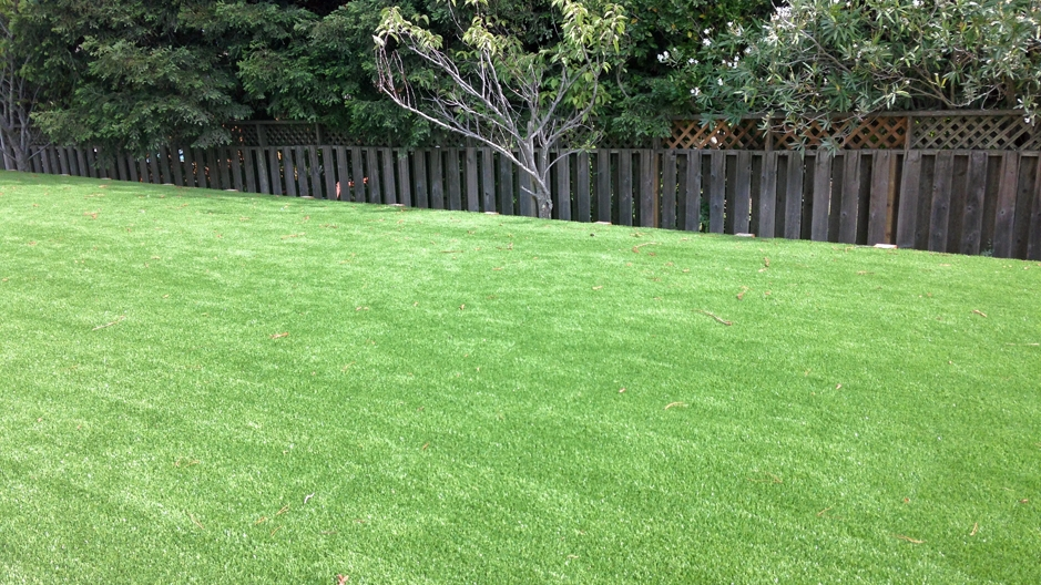 Artificial Grass Installation In Cape Coral, Florida
