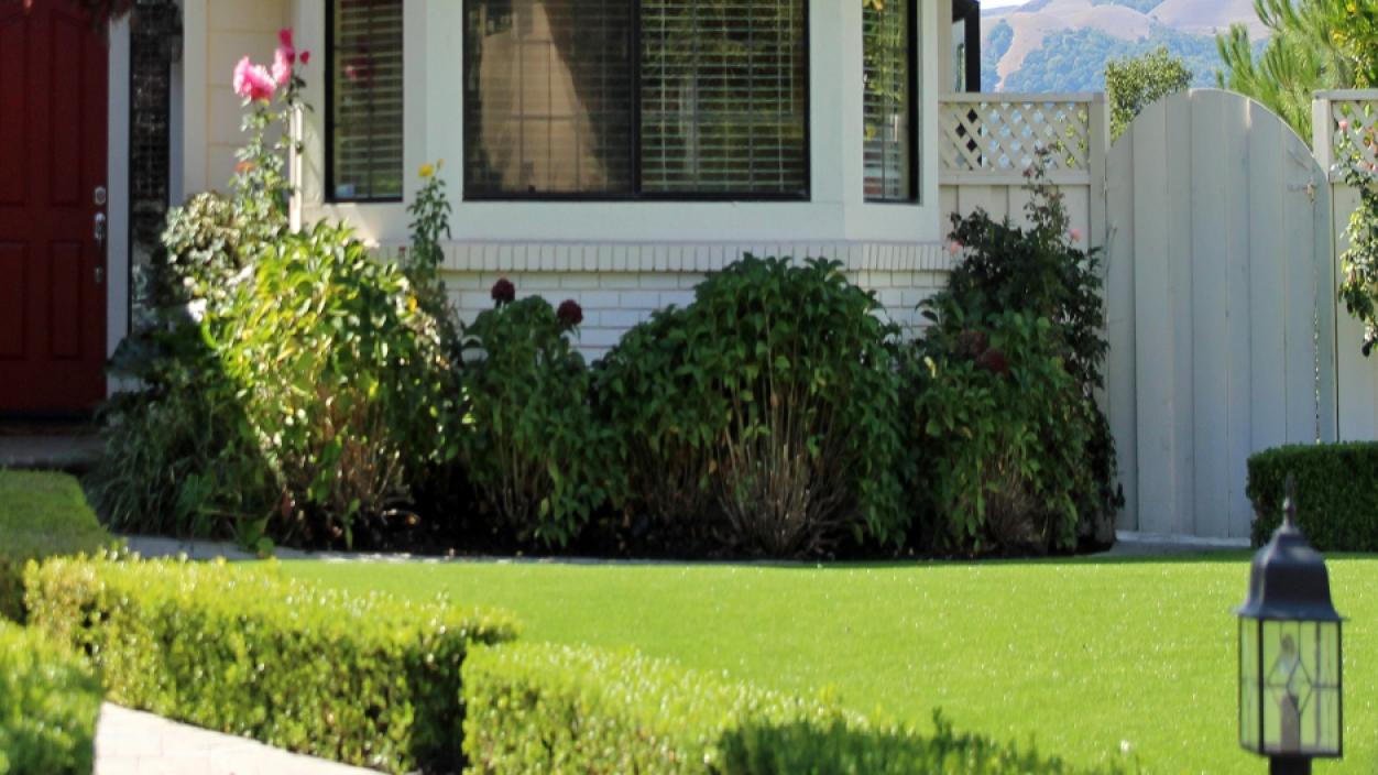 Artificial Grass Installation In Culver City, California