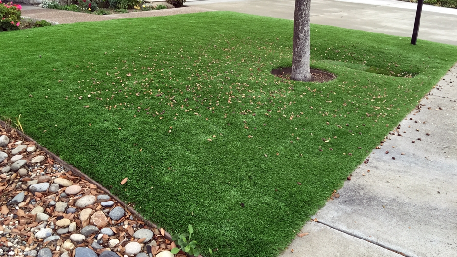 Artificial Grass Installation in Rancho Mirage, California
