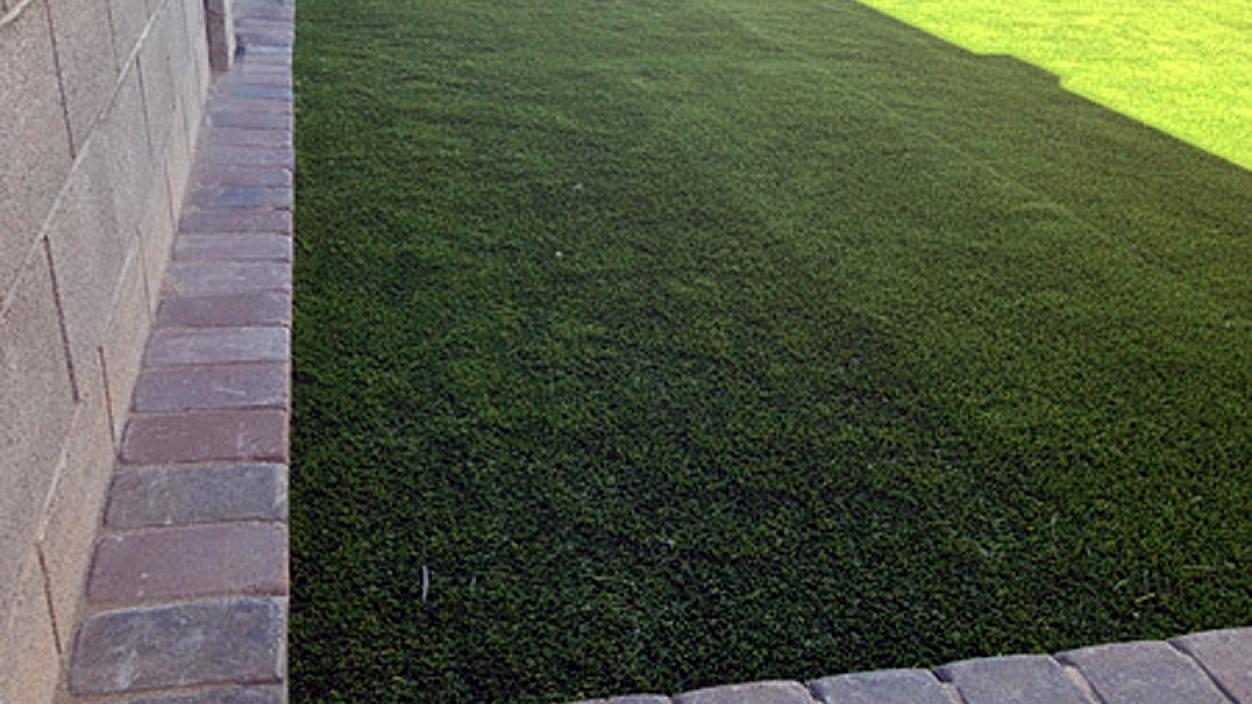 Artificial Grass Installation in Tolleson, Arizona
