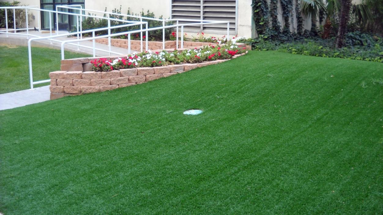 Artificial Grass Installation in West Palm Beach, Florida
