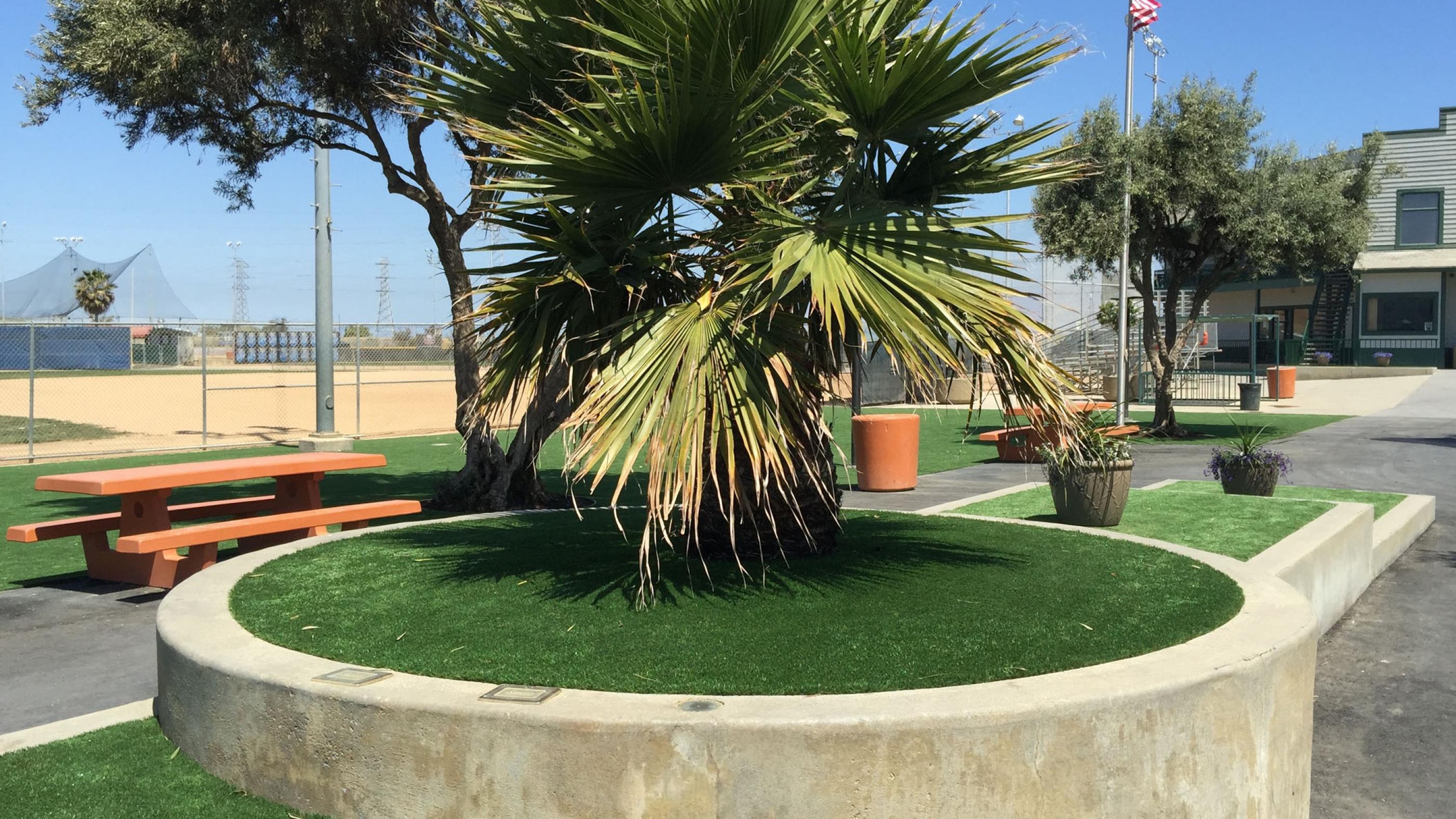 Outdoor Carpet, Artificial Grass Pico Rivera, California