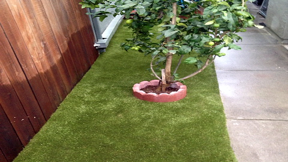 Synthetic Grass Installation In San Diego, California