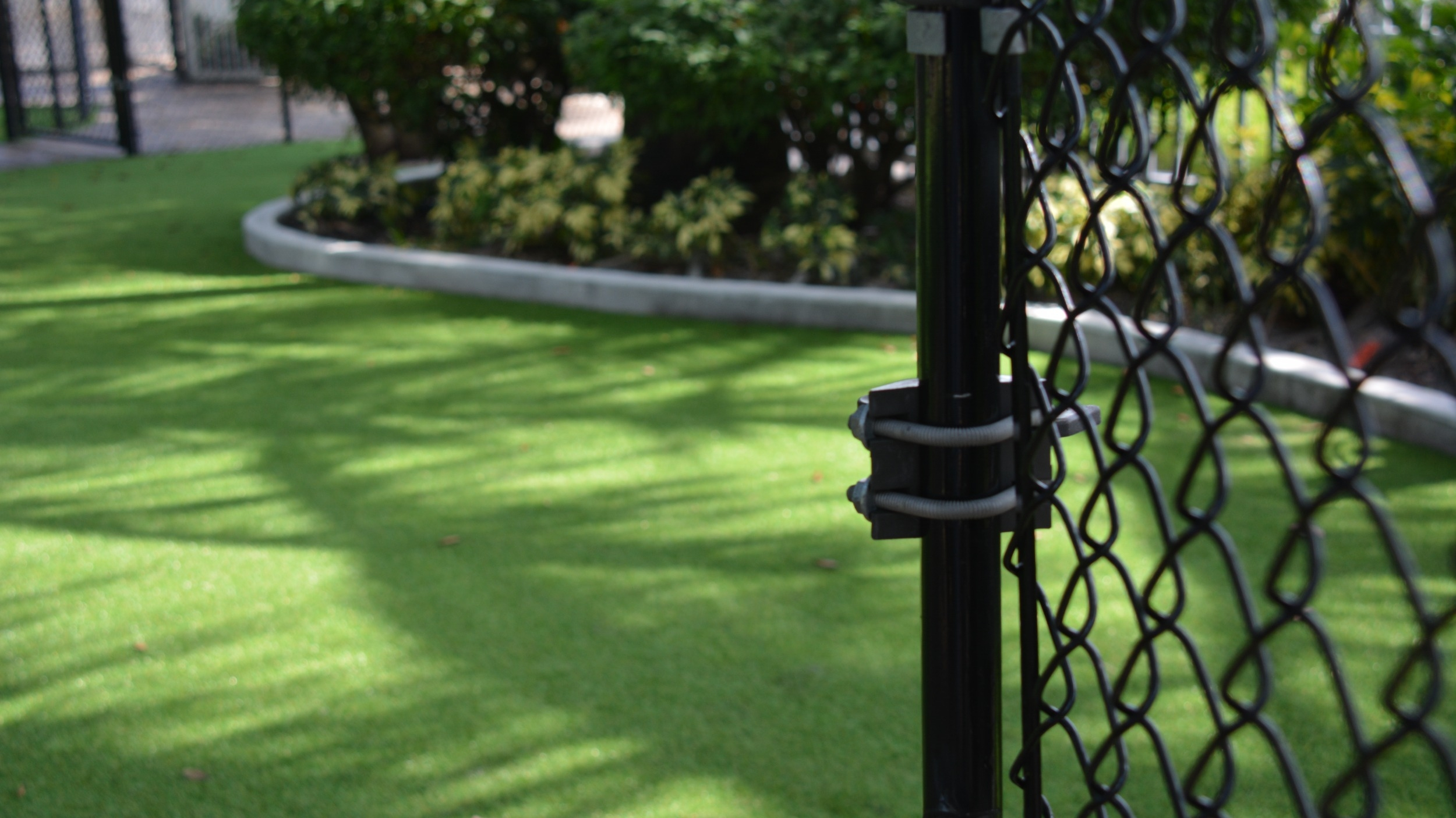 green lawn black chain-link fence synthetic artificial grass grass curved lawn borders