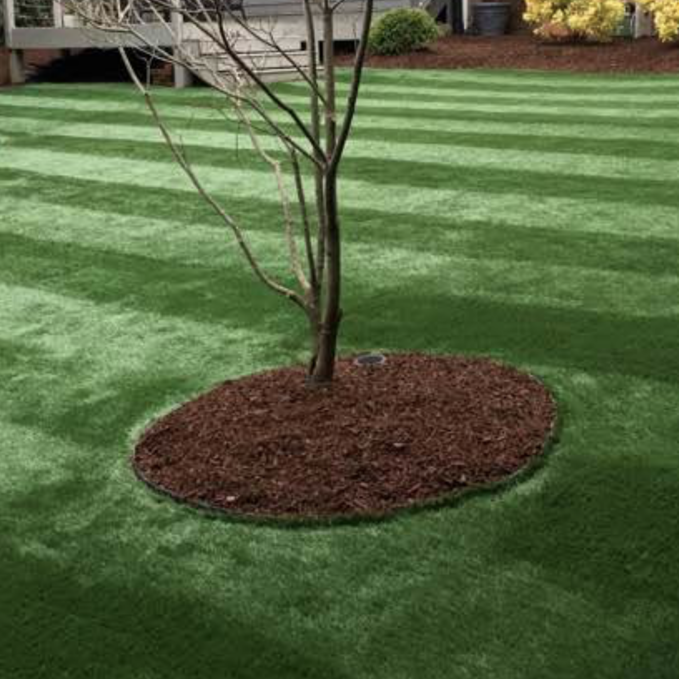Artificial Turf Landscaping Ideas Synthetic Lawns