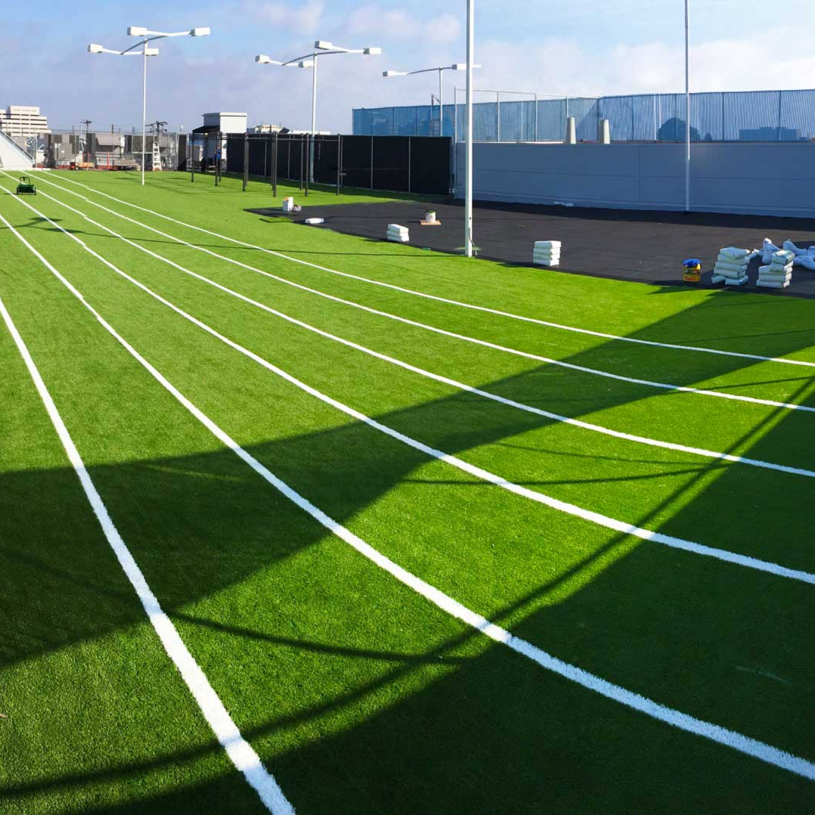 Sports Track Synthetic Grass
