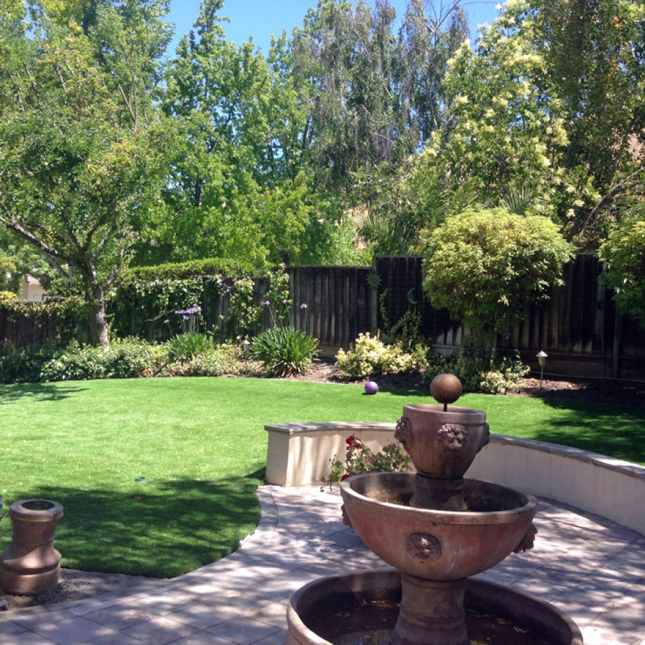 Artificial Grass Installation in Fremont, California