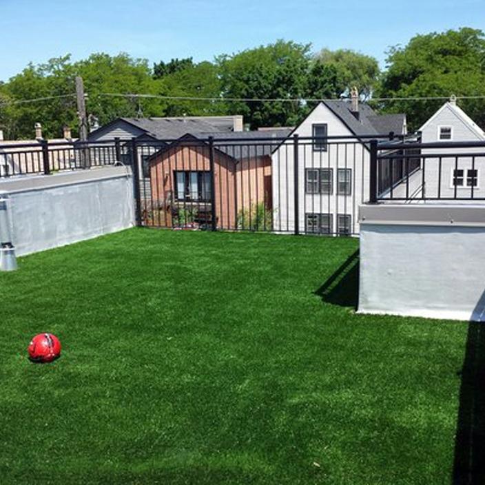 Artificial Lawn Backyard in Chicago, Illinois