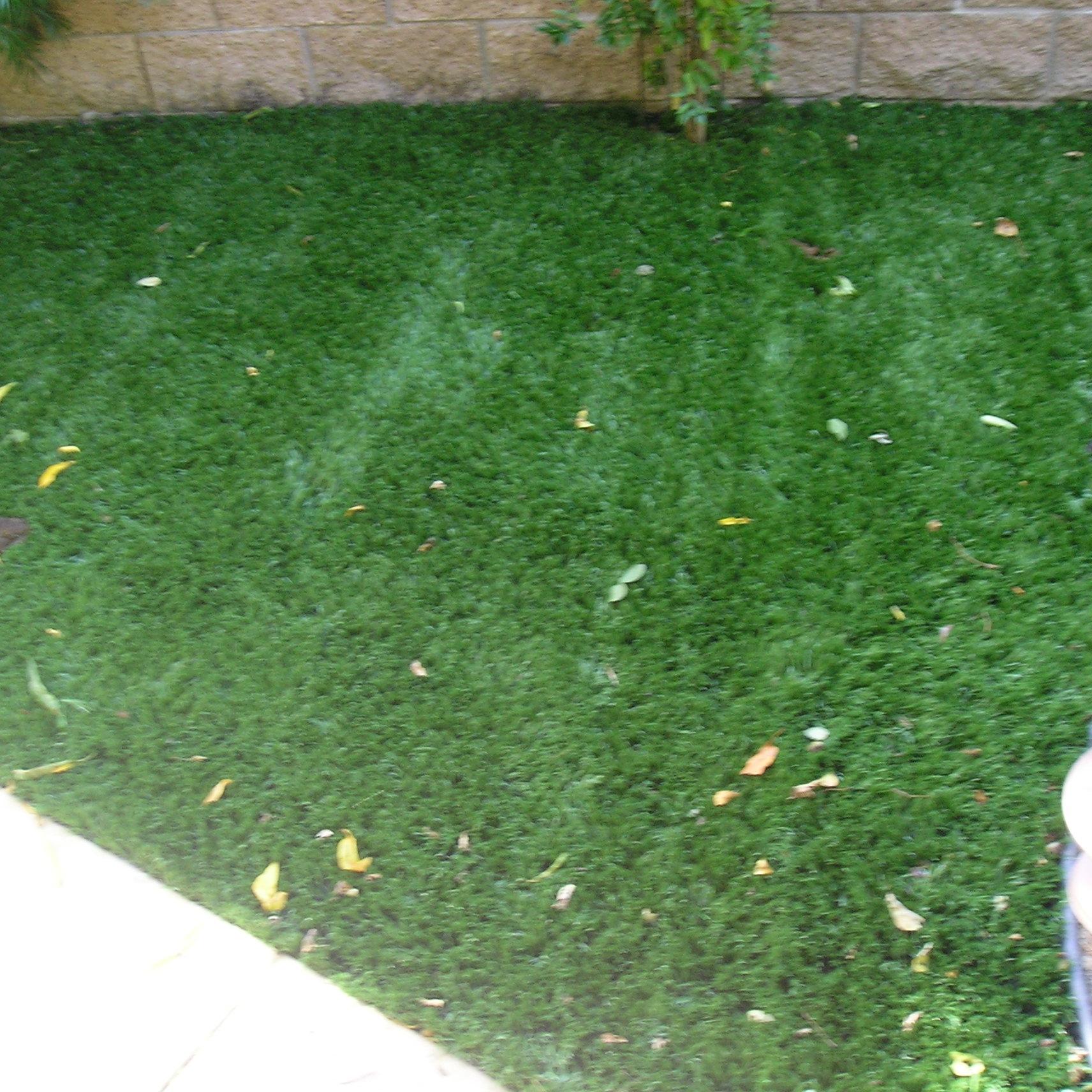 Cool Blue Hollow Olive fake green grass,green grass carpet
