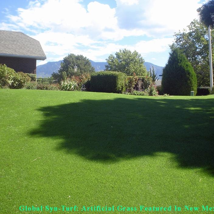 Synthetic Grass in Albuquerque, New Mexico