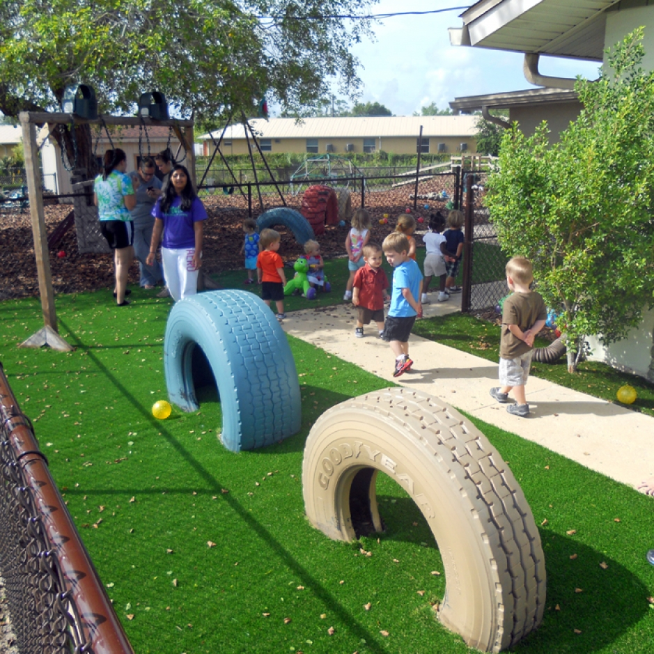 Artificial Grass Installation in Palm Harbor, Florida