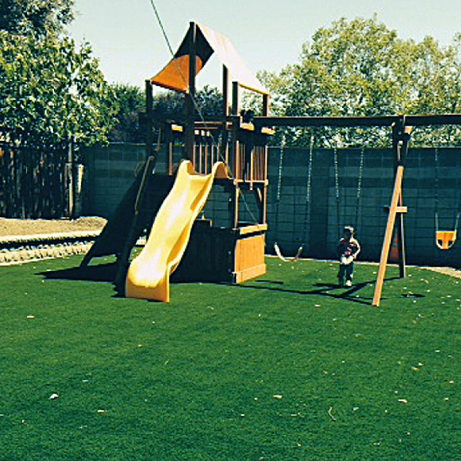 Artificial Grass Installation in Albany, California