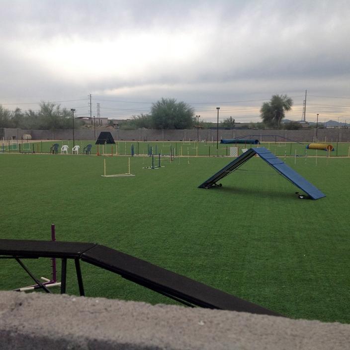 Artificial Grass Installation in Pomona, California