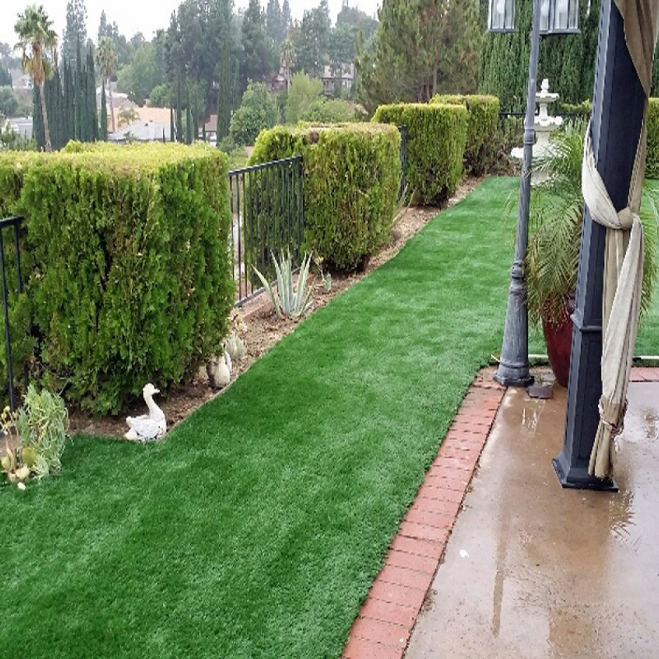Artificial Grass Installation in Murrieta, California