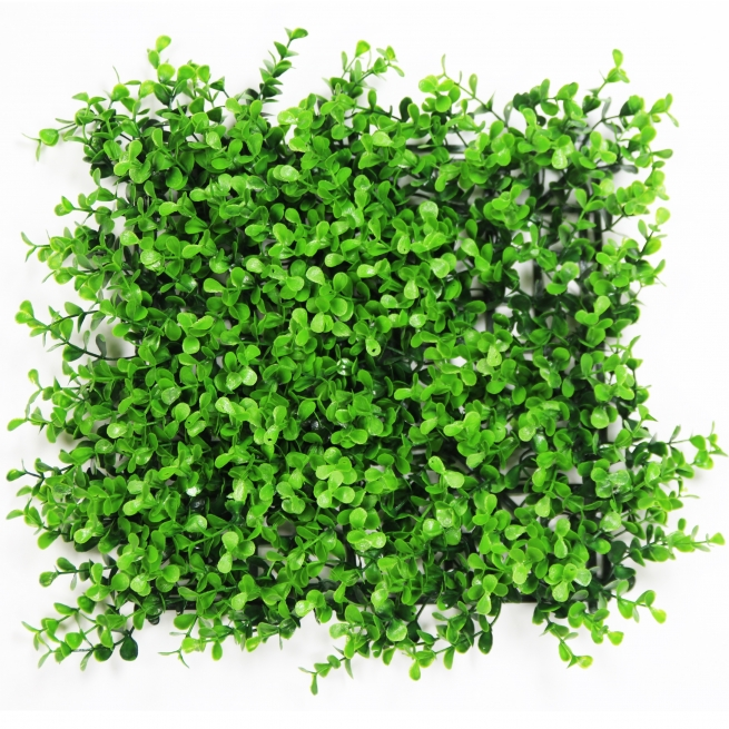 Hawthorn Hedge artificial boxwood ivy panels