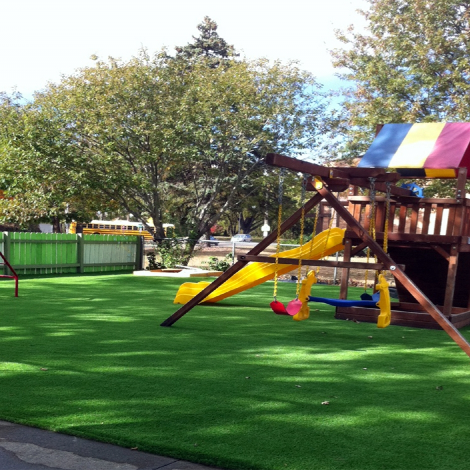 Artificial Grass, Synthetic Grass Berkeley, Alameda County, California