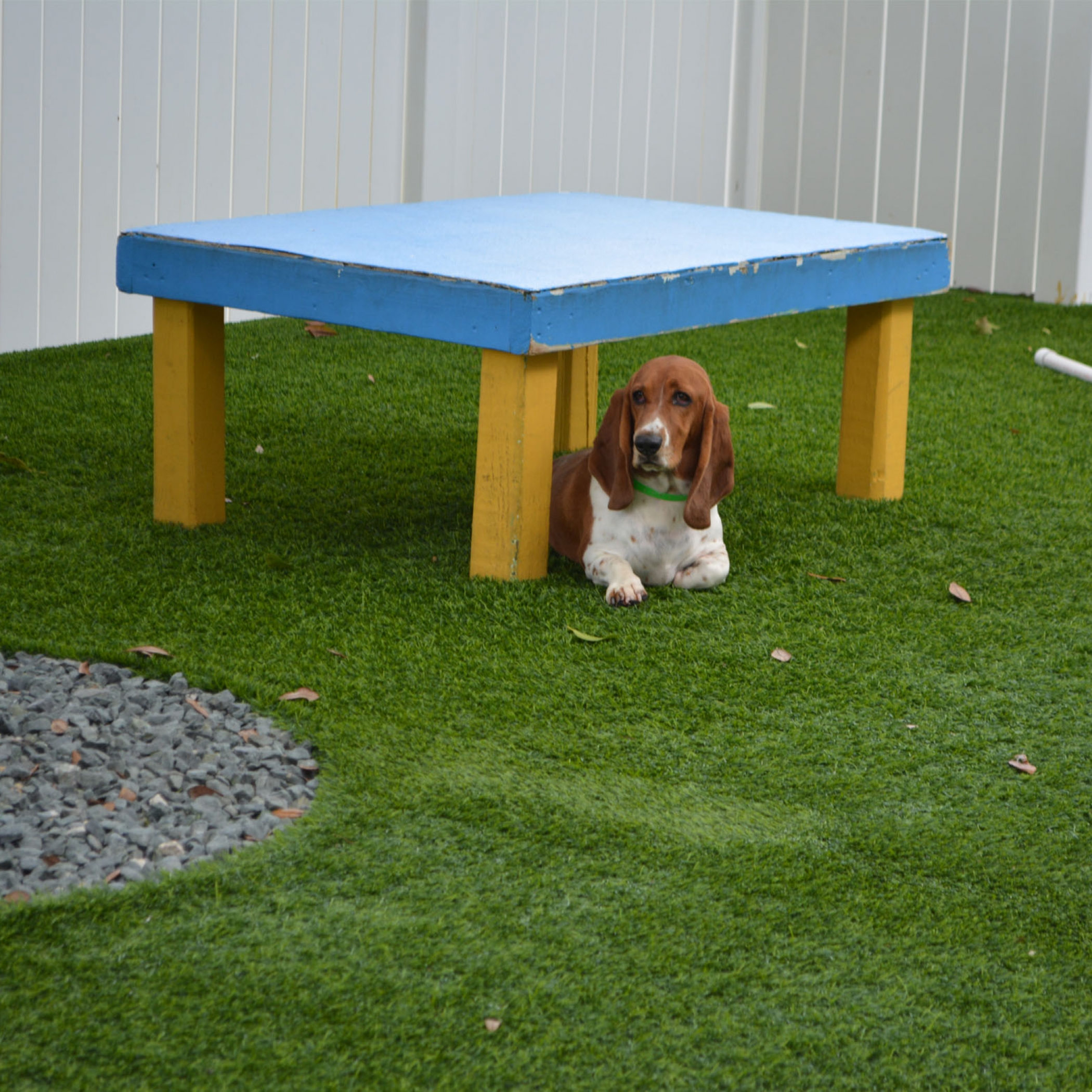 Dog Parks with Artificial Grass for Dogs Antelope, California