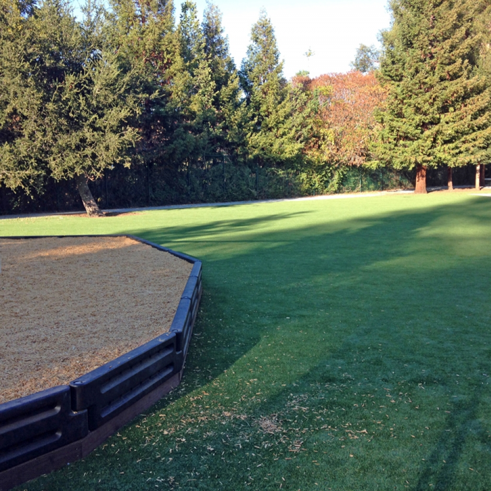 Artificial Grass Installation in Castro Valley, California