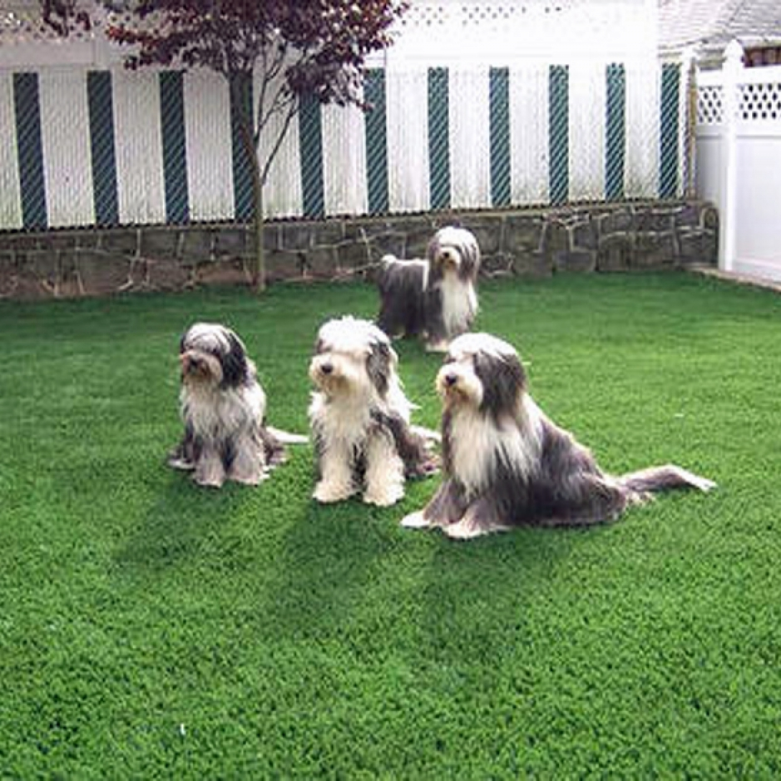 Artificial Grass Installation In Cincinnati, Ohio