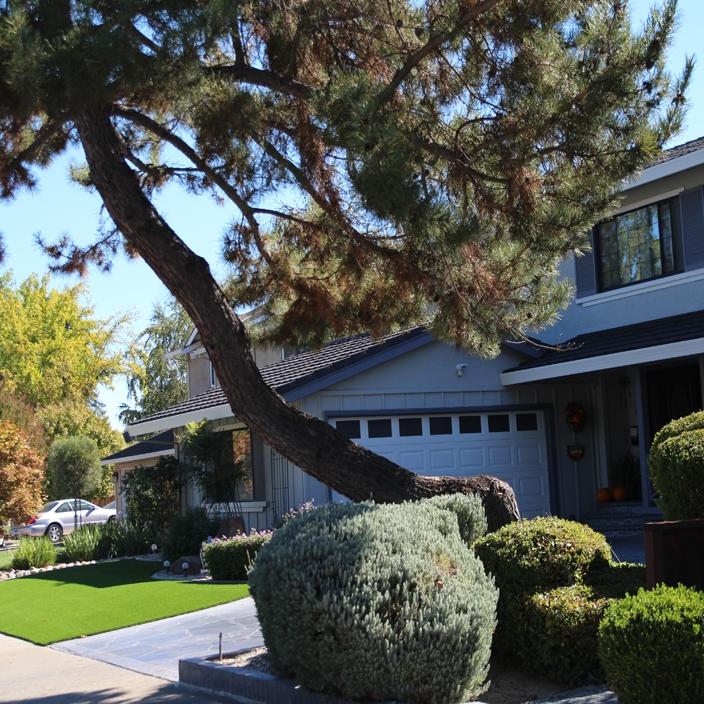Artificial Grass Installation in Colton, California