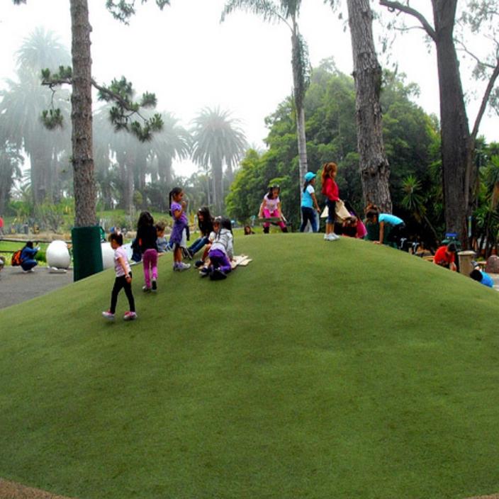 Artificial Grass Installation in San Pedro, California