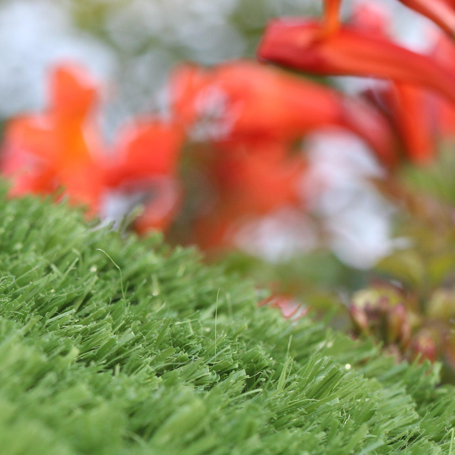 Bent Grass 38 oz. Golf Putting Greens
