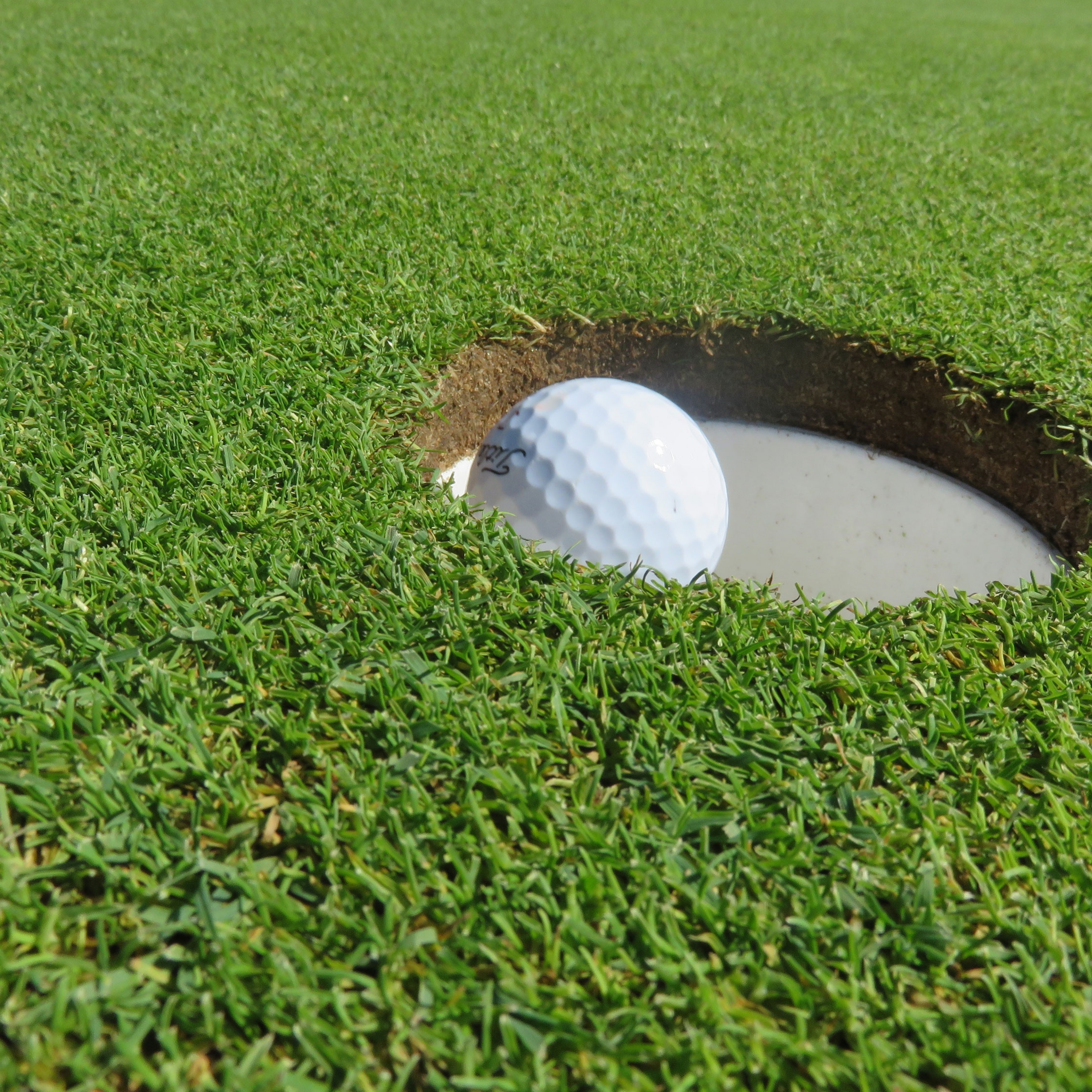 Golf Accessories for Synthetic Turf