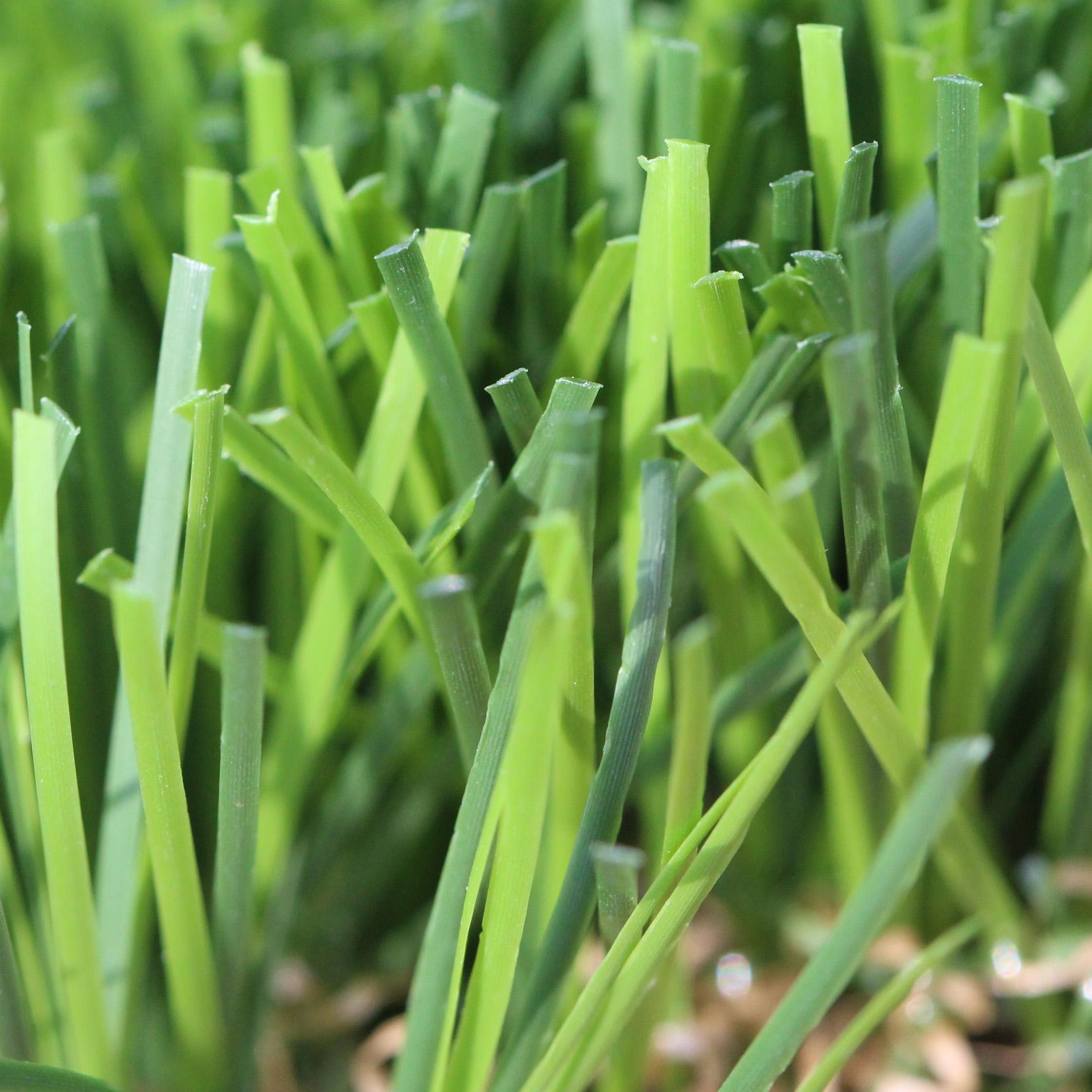 High Sierra Artificial Grass