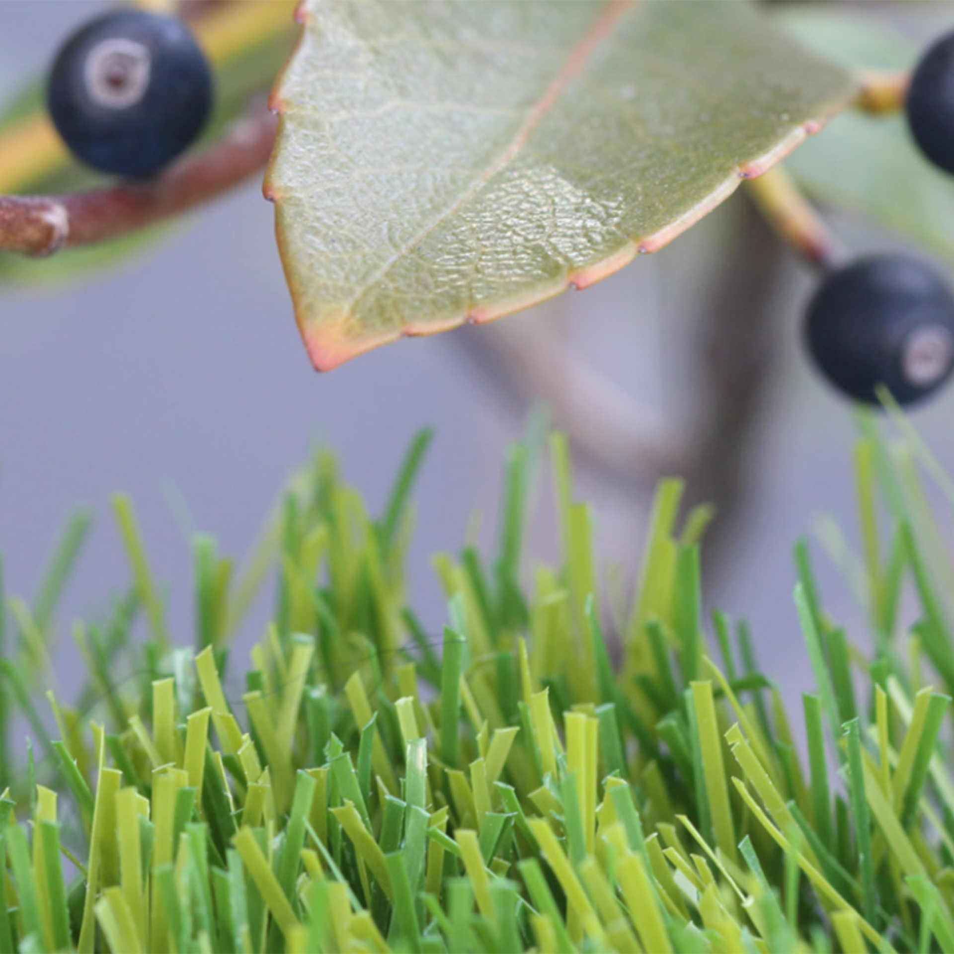 Olive Series Artificial Grass