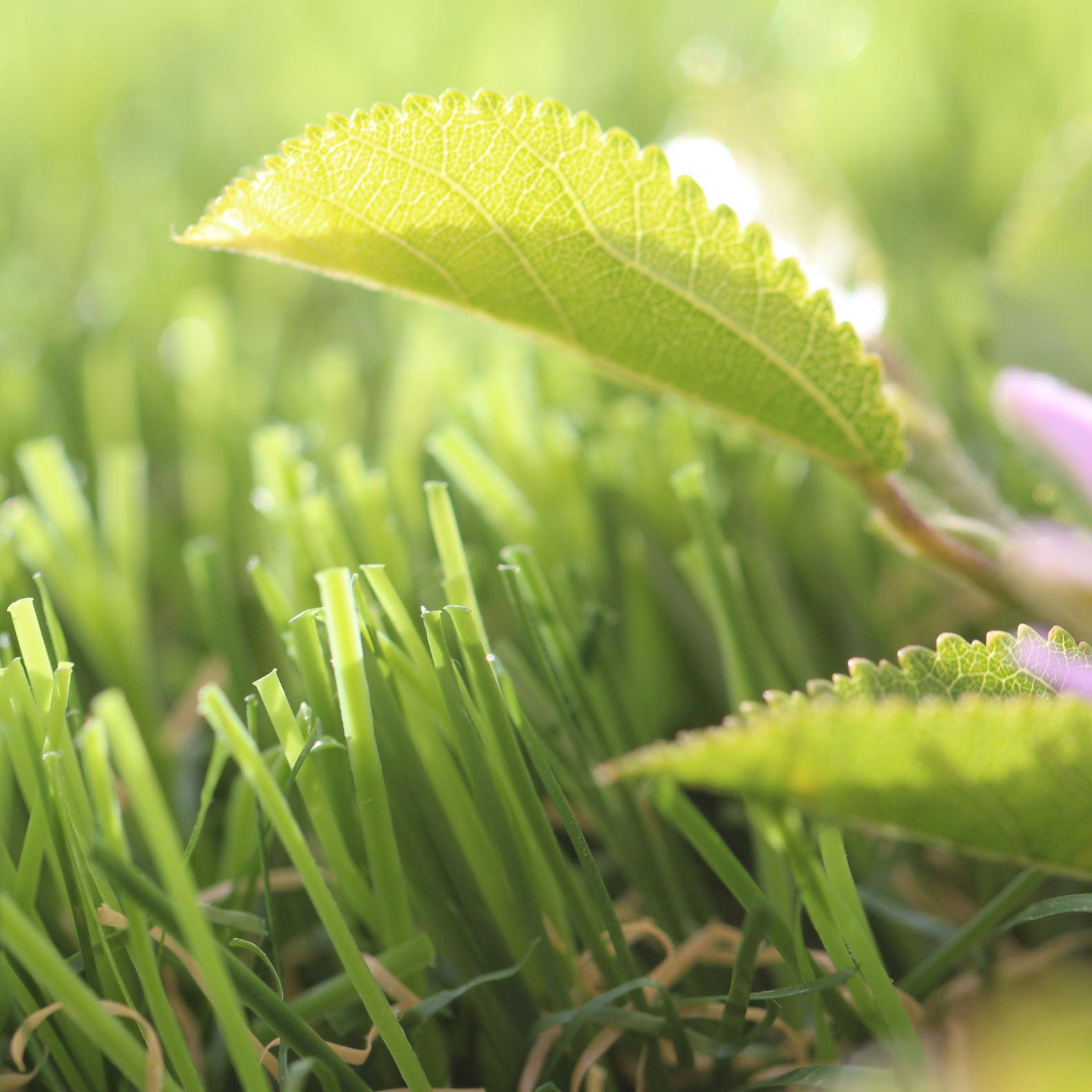 Sierra artificial grass 94 ounces