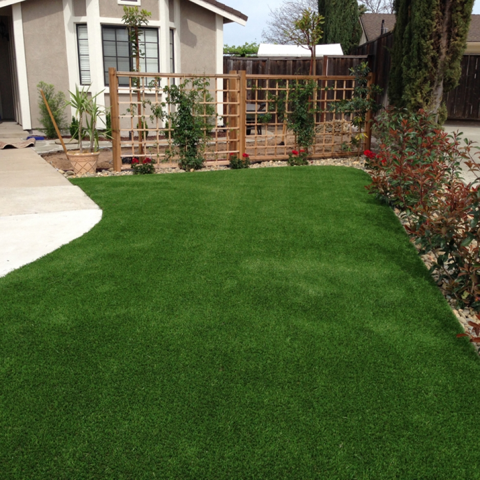 Synthetic Grass In Torrance, California