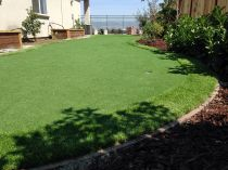 Synthetic Lawn in Fresno, California