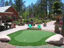 Artificial Grass in Phoenix, Arizona