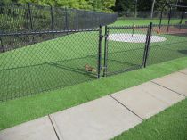 Artificial Grass Installation in Raleigh, North Carolina