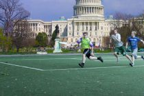Artificial Grass in Washington DC