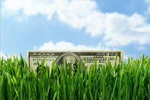 Ways to save water, artificial grass, dollar bill, cut bills, no lawn maintenance, warranty