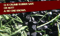 Crumb Rubber Controversy Reaches Washington and Toronto