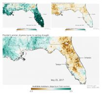Satellite images of progressing drought in Florida 2016-2017