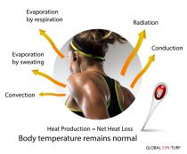 How Sweat cools down body. Body heat transfer. Why the temperature remains the same.