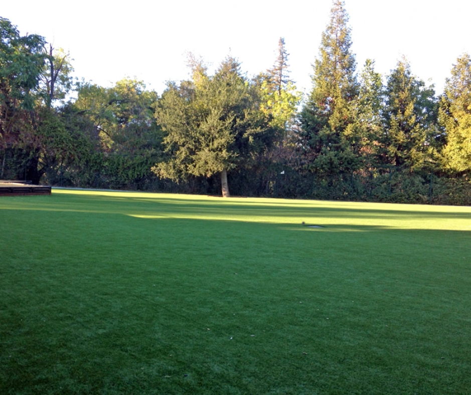 Artificial Grass Installation in Woodside, California