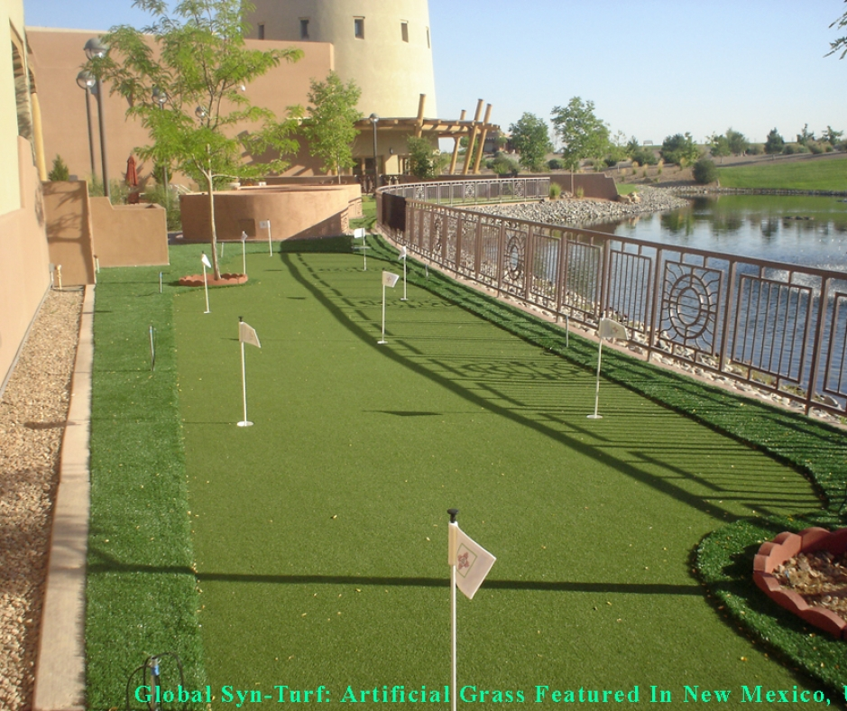 Artificial Grass In Albuquerque, New Mexico