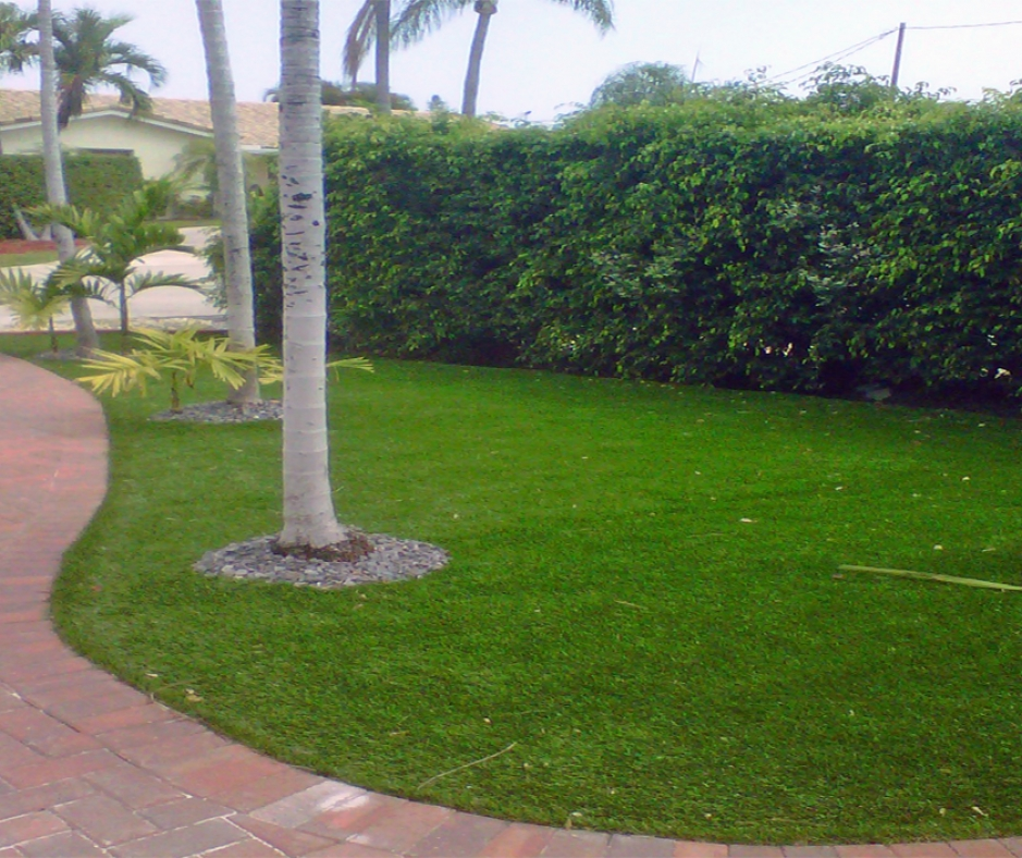 Artificial Grass Installation in Longwood, Florida