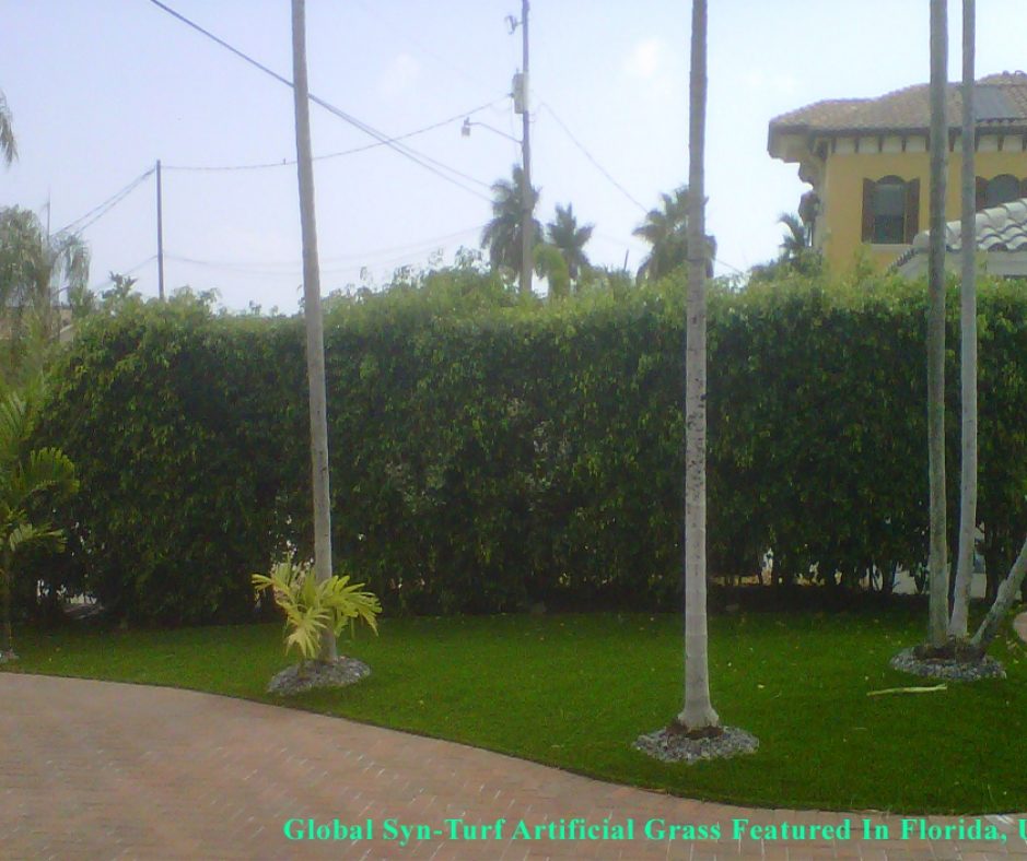 Artificial Grass Sidewalk public palm trees