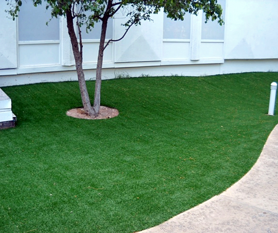 Artificial Grass Installation In San Anselmo, California