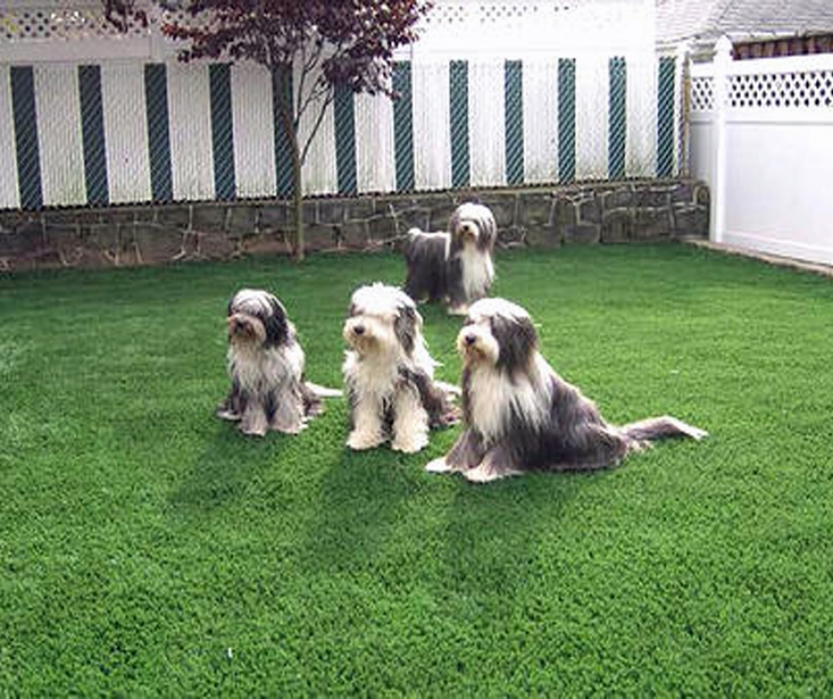 Artificial Grass Installation In Cincinnati, Ohio