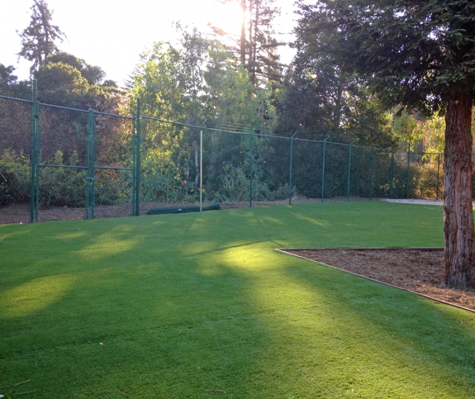 Artificial Grass Installation in Placerville, California